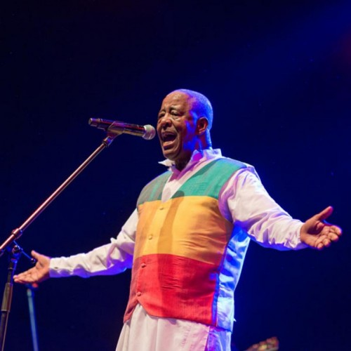 WOMAD THE WORLDS FESTIVAL UK 2015 - 24-26.07.15