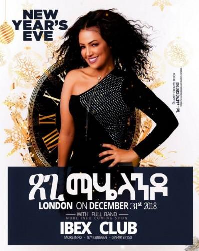 New years Eve Concert Presents Etsegent