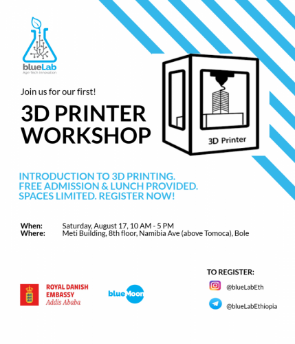 BlueMoonEthiopia 3D Printer Workshop