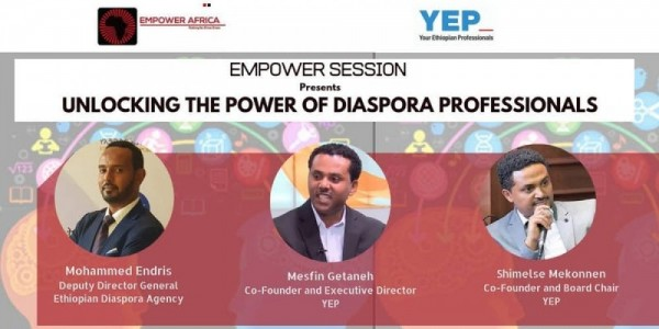 Unlocking the Power of Diaspora Professionals